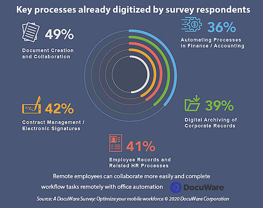 Percentage of processes digitized