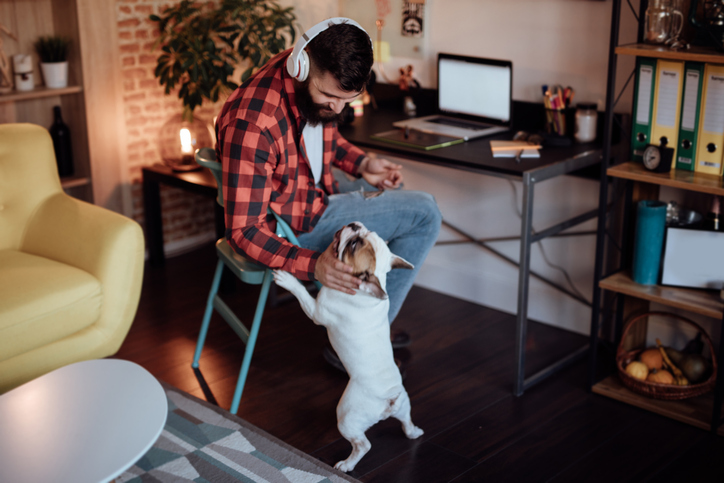 Man working from home and his dog